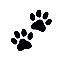 Hand in Paw to Visit UAB Libraries
